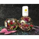 BLOSSOM Hibiscus Scented Cuticle Oil